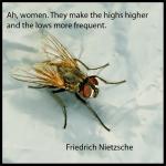 Billedet har jeg brugt før, men citatet skal nok bringe mig på glatis!