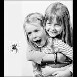 Arrrrgg....en edderkop!!!