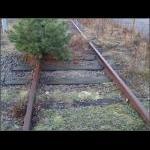 Natur billeder 001.jpgx