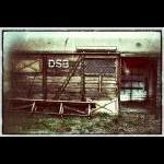 DSB Hest