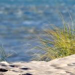 Henne Strand 2